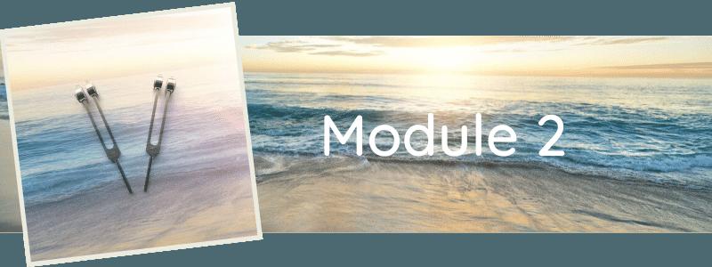 Formation Module 2