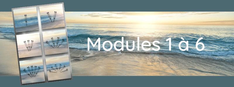 Formation Modules 1 à 6