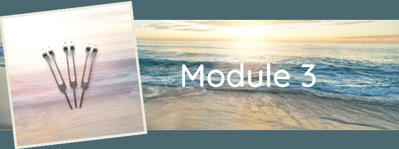 Formation Module 3