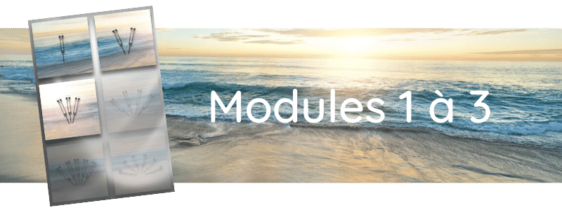 Formation Modules 1 à 3