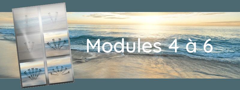 Formation Modules 4 à 6