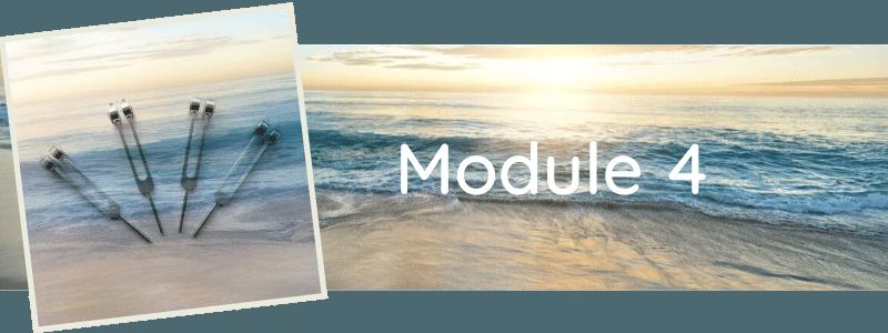 Formation Module 4