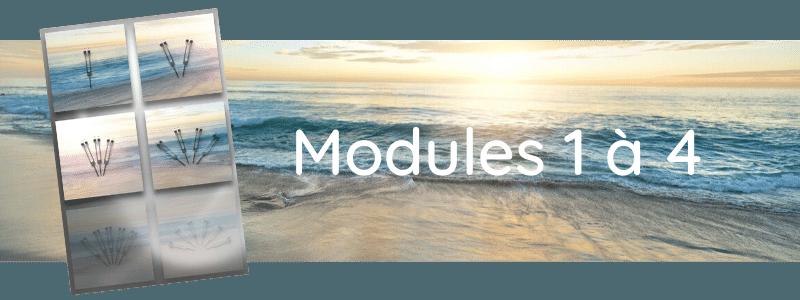 Formation Modules 1 à 4