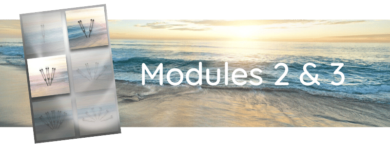 Formation Modules 2 & 3