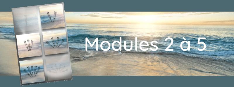 Formation Modules 2 à 5