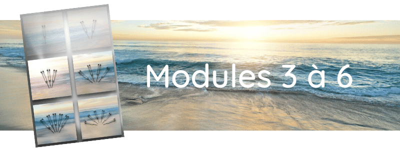 Formation Modules 3 à 6