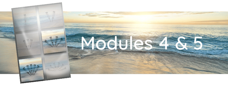 Formation Modules 4 & 5