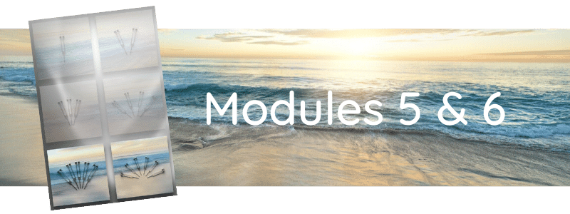 Formation Modules 5 & 6
