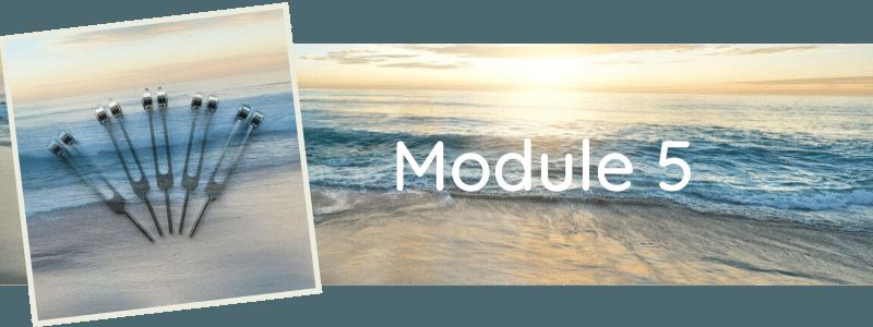 Formation Module 5