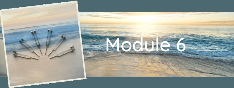 Formation Module 6
