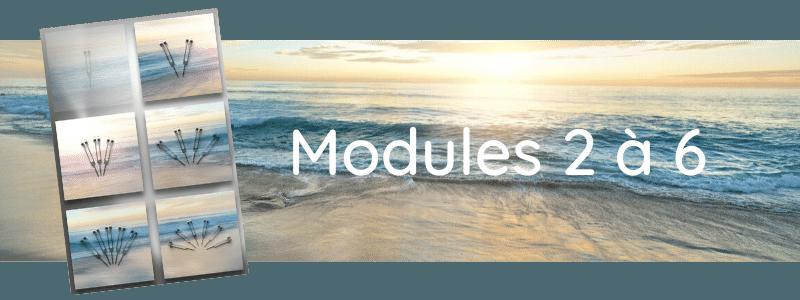 Formation Modules 2 à 6